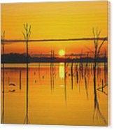 Golden Sunrise Iv Wood Print