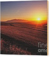 Golden Sunrise Over Farmland Wood Print