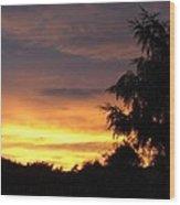 Golden Sunset 3 Wood Print