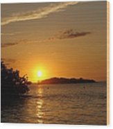 Golden Sunset In Keys Wood Print by Ella Char