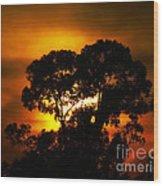 Golden Sunset... Wood Print