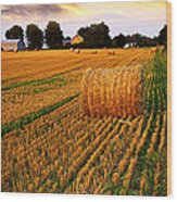 Golden Sunset Over Farm Field With Hay Bales Wood Print by Elena Elisseeva