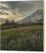 Golden Sunstar Rainier Meadows Wood Print