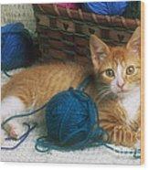 Golden Tabby Kitten Wood Print