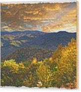 Golden Tipped Smokey's  Wood Print