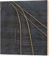 Golden Tracks Wood Print