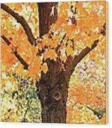 Golden Tree Wood Print