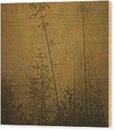 Golden Trees In Winter Wood Print