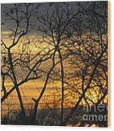 Golden Twilight 2 Wood Print