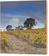 Golden Vines Wood Print