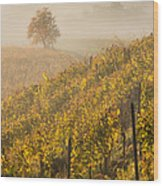 Golden Vineyard And Tree Wood Print