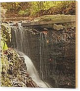 Golden Waterfall October In Ohio Wood Print