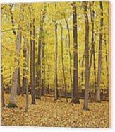 Golden Woods Wood Print