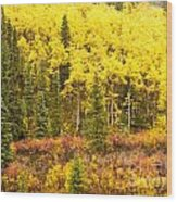 Golden Yellow Fall Boreal Forest In Yukon Canada Wood Print