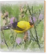 Goldfinch #3 By Kerri Farley Wood Print