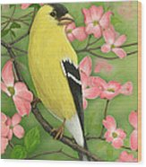 Goldfinch And Dogwood Wood Print