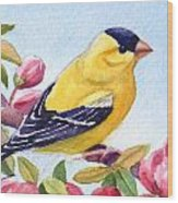 Goldfinch In A Crab Apple Tree Wood Print