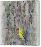 Goldfinch In Wildflowers Wood Print