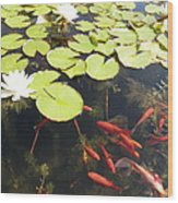 Goldfish And Water Lily 1 Wood Print