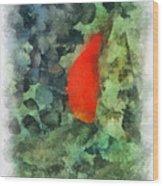 Goldfish Photo Art 04 Wood Print