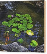 Goldfish With Lily Pads Wood Print