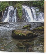 Goldrush Falls Wood Print