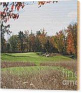 Golf Anyone? Wood Print