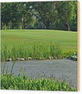 Golf Course Lay Up Wood Print by Frozen in Time Fine Art Photography