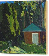 Golf Course Shed Series No.19 Wood Print