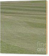 Golf Grass Wood Print