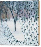 Golf Netting Wood Print