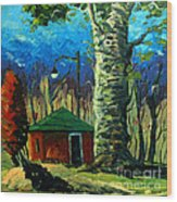 Golf Shed Series No 17 Wood Print by Charlie Spear