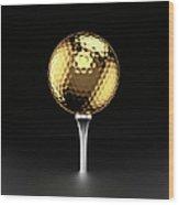 Golfball And Alluminium Golf Tee Wood Print