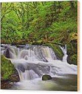 Golitha Falls And River Fowey Wood Print