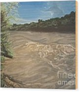Gomez Farm San Juan River Wood Print
