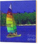 Gone For A Sail Wood Print