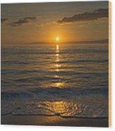 Good Night Gulf Coast Wood Print