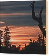 Good Night Trees Wood Print