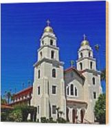 Good Shepherd Catholic Church Wood Print