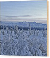 Goodnight Chugach Wood Print