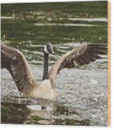 Goose Action Wood Print