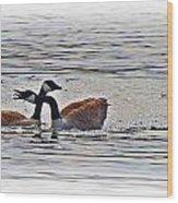 Goose Crossing Wood Print