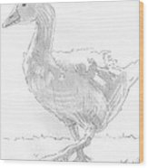 Goose Drawing Wood Print