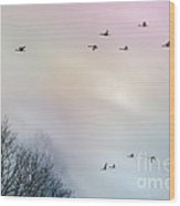 Goose Flight Wood Print