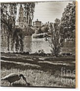 Goose In Central Park Nyc Wood Print