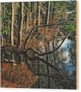 Goose Lake Twilight Wood Print