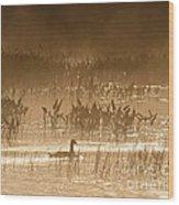 Goose Of The Mist Wood Print
