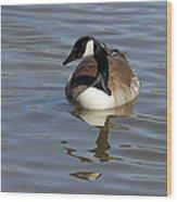 Goose Reflecting  Wood Print