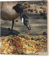 Goose Sticking Tongue Out Wood Print