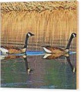 Goose Talk Too Wood Print